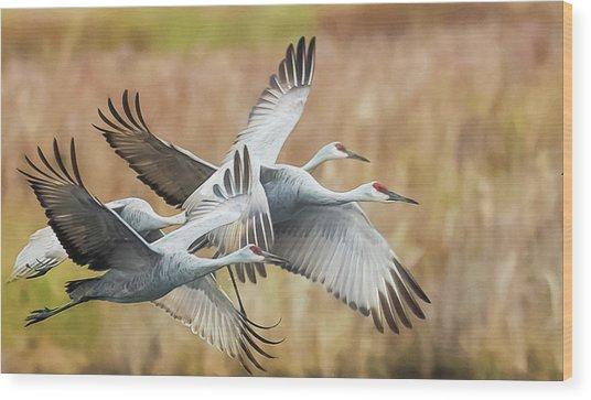 Great Migration  Wood Print