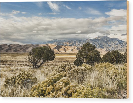 Great Sand Dunes National Park And Preserve Wood Print