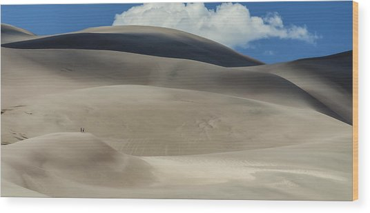 Great Sand Dunes National Park II Wood Print