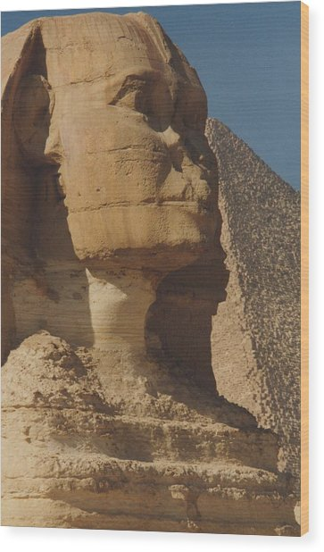 Great Sphinx Of Giza Wood Print
