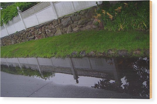 Great Wall Of Puddle Wood Print by Ron Sylvia