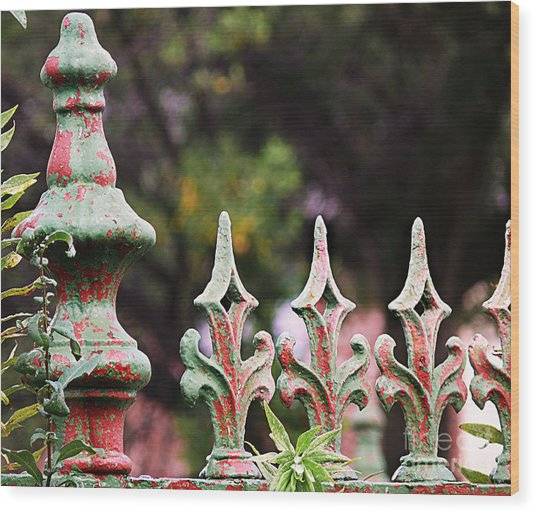 Green And Red Iron Fence Wood Print