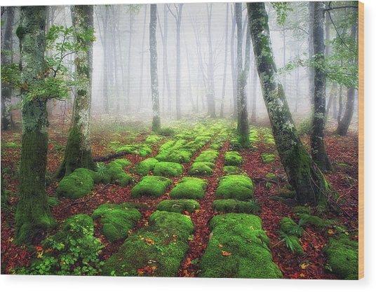 Green Brick Road Wood Print