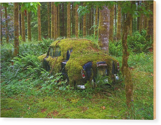 Green Car Wood Print by Ulrich Burkhalter