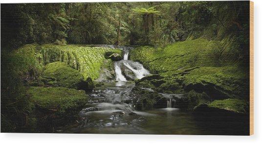 Green Cascade Wood Print by Peter Prue