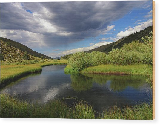 Green Creek By Frank Hawkins Wood Print