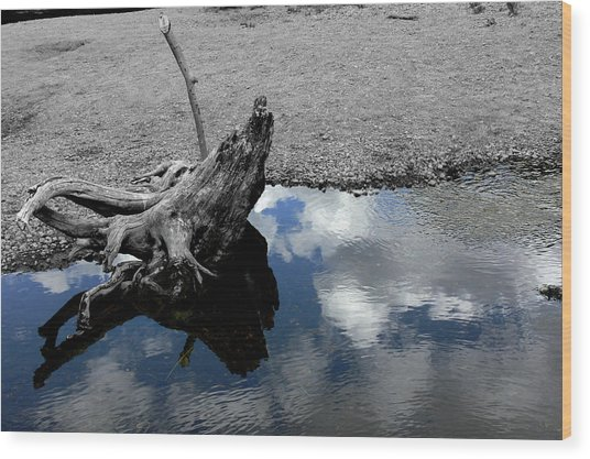 Green Creek Selective Color Wood Print