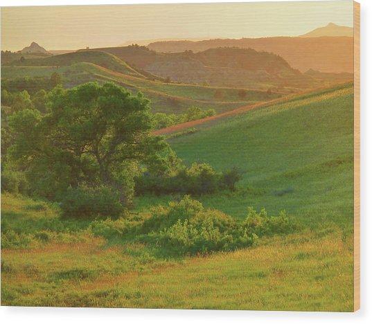 Green Dakota Dream Wood Print