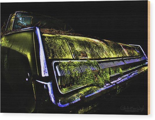 Green Dodge Glory Wood Print