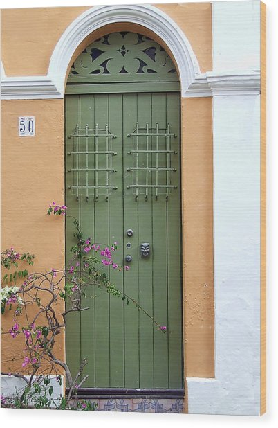 Green Door Wood Print
