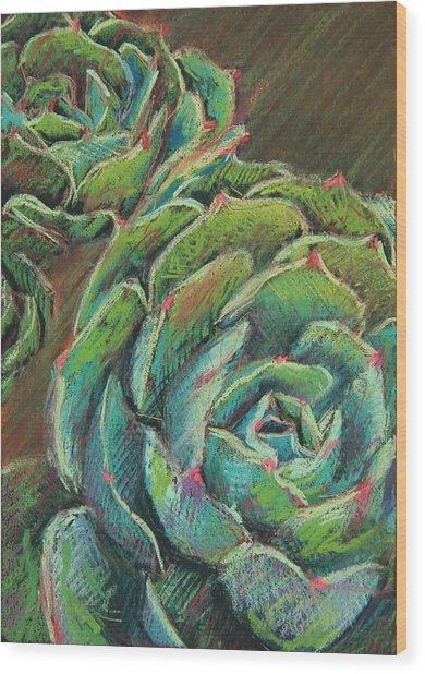 Green Echeveria Wood Print