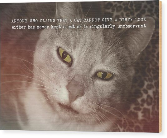 Green Eyed Glare Quote Wood Print by JAMART Photography