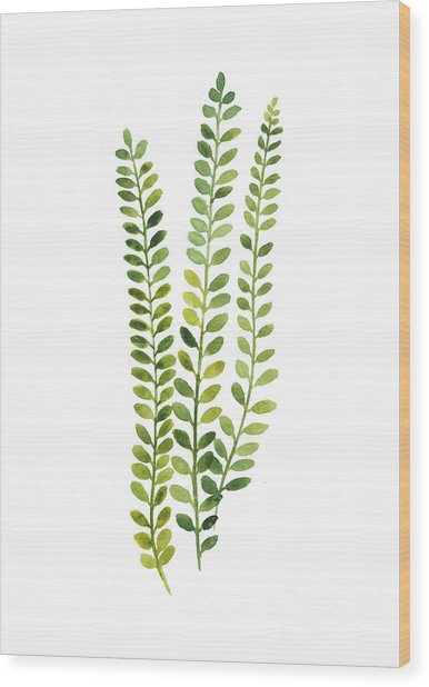 Green Fern Watercolor Minimalist Painting Wood Print