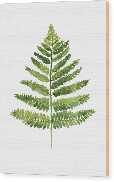 Green Ferns Watercolor Poster Wood Print
