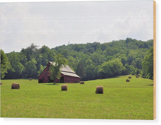Green Fields Wood Print by Jan Amiss Photography