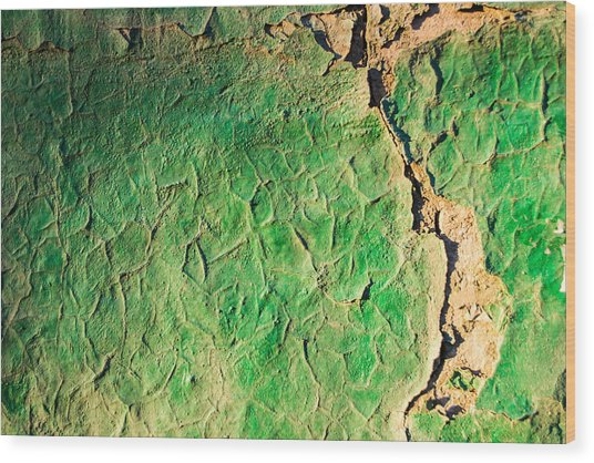 Green Flaking Brickwork Wood Print