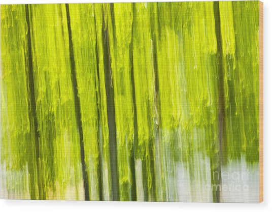 Green Forest Abstract Wood Print