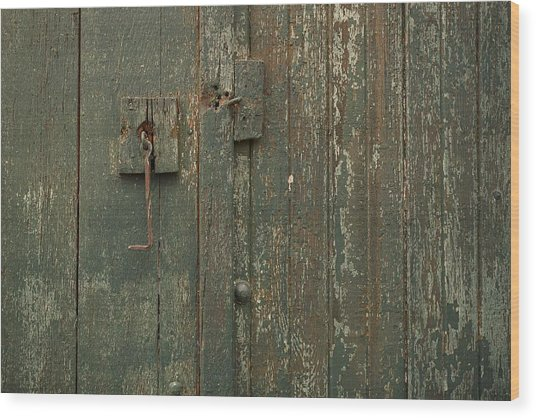 Green Garage Door Wood Print