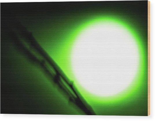 Green Goblin Wood Print
