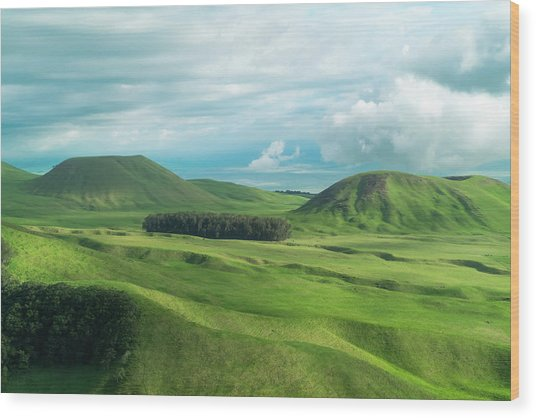 Green Hills On The Big Island Of Hawaii Wood Print