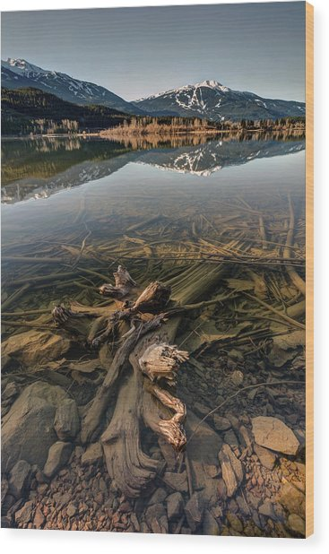 Wood Print featuring the photograph Green Lake Ironwood by Pierre Leclerc Photography