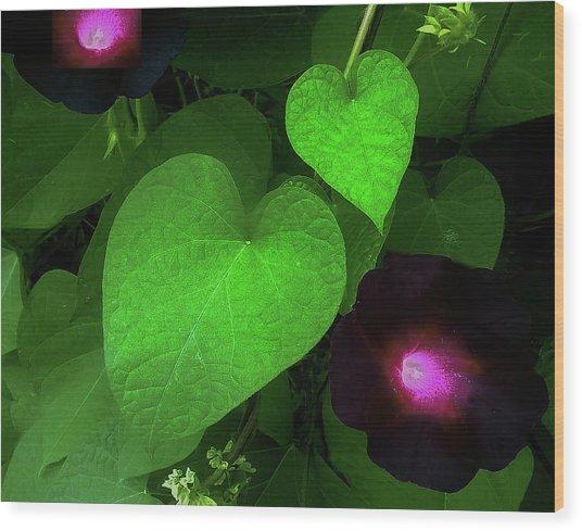 Green Leaf Violet Glow Wood Print