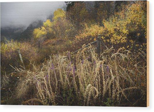 Green Mountain Dawn Wood Print