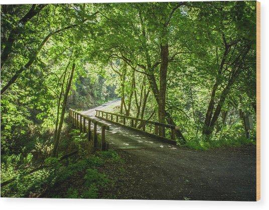 Green Nature Bridge Wood Print