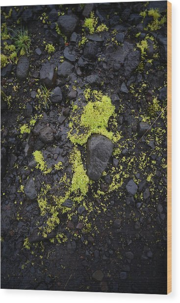 Green On Black On Iceland's Fimmvorduhals Trail Wood Print