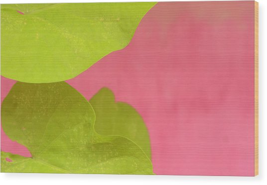 Green On Pink 1 Wood Print by Art Ferrier