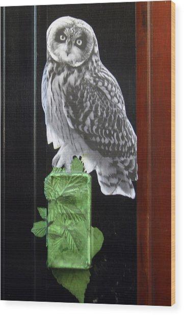 Green Owl Wood Print by Jez C Self