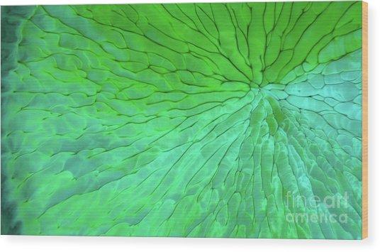 Green Pattern Under The Microscope Wood Print