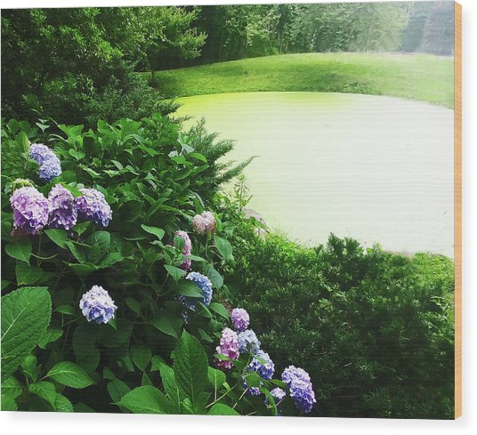 Green Pond Wood Print