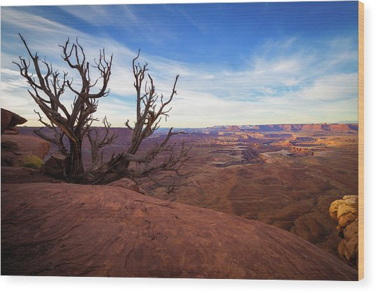 Green River Overlook Wood Print