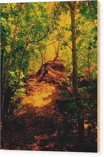 Green Silence Wood Print