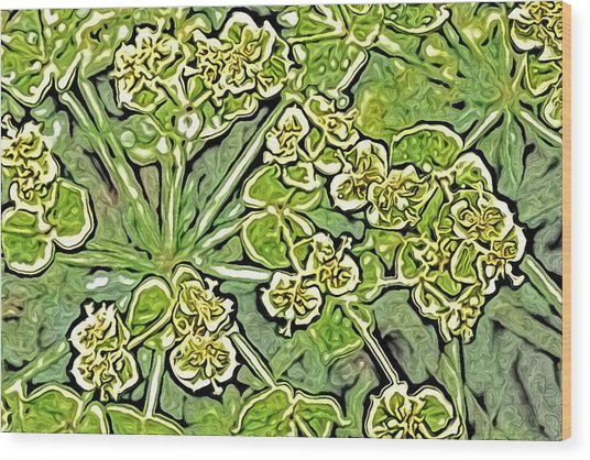 Green Spurge 1 Wood Print