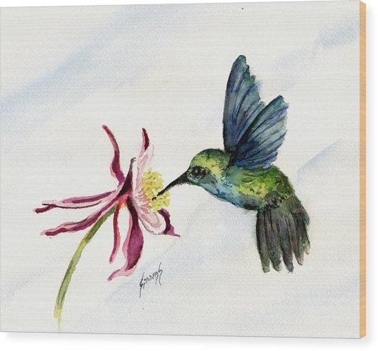 Green Violet-ear Hummingbird Wood Print