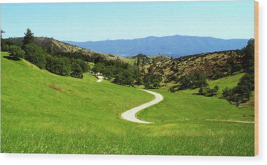 Greener Pastures Wood Print