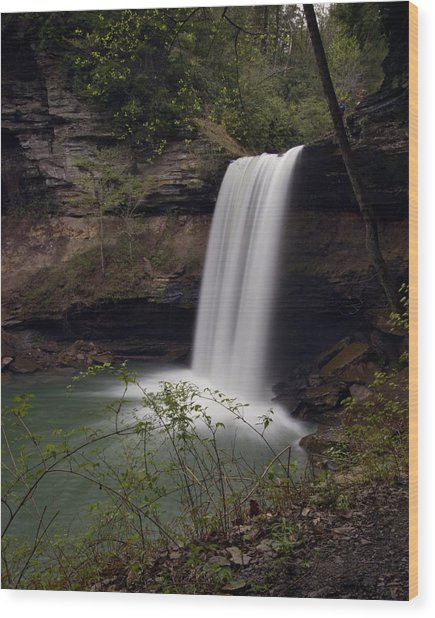 Greeter Falls Wood Print