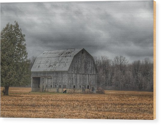 0024 - Grey Barn And Tree Wood Print