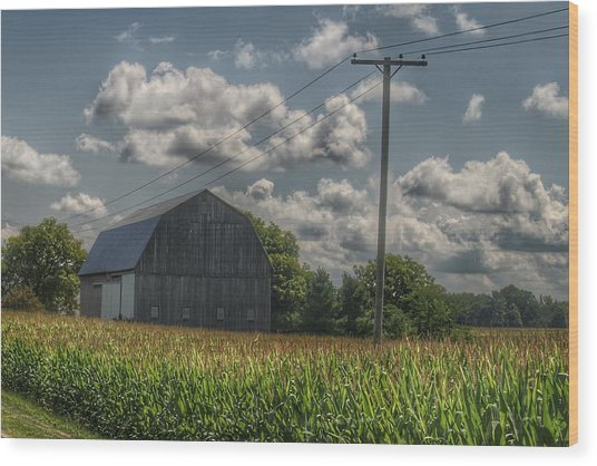 0013 - Grey Barn In A Cornfield Wood Print