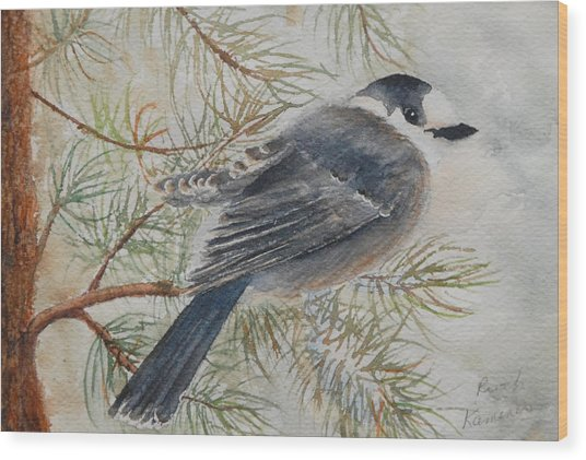Wood Print featuring the painting Grey Jay by Ruth Kamenev