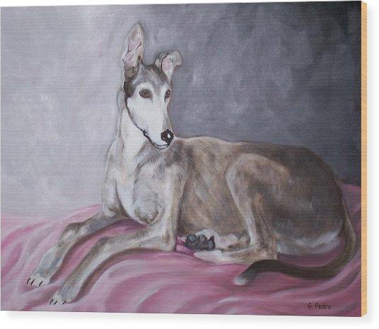 Greyhound At Rest Wood Print