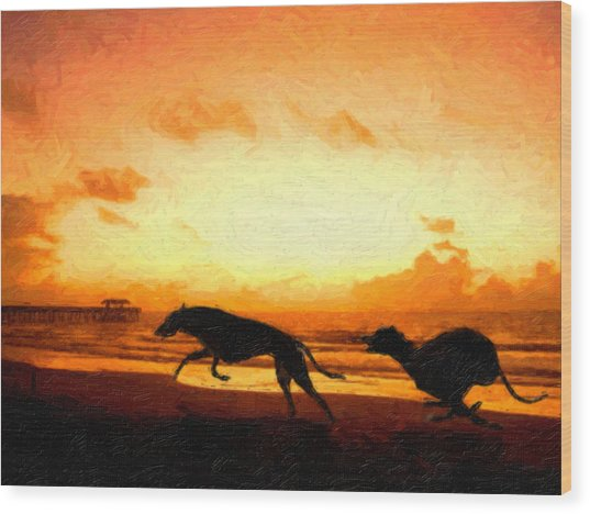 Greyhounds On Beach Wood Print by Michael Tompsett