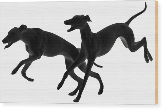 Greyhounds Travelling At 45 Mph Wood Print