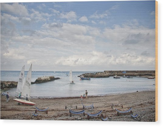 Greystones Harbour With Yachts Wood Print by Gary Rowe