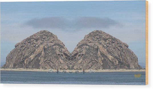 Grinch Of The Rock In Morro Rock Wood Print by Gary Canant