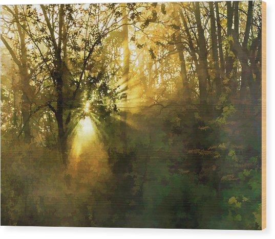 Grings Mill Fog 15-039 Wood Print