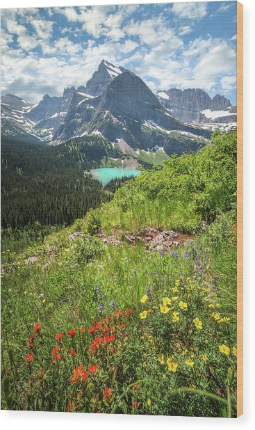 Grinnell Flowers // Grinnell Hiking Trail, Glacier National Park  Wood Print