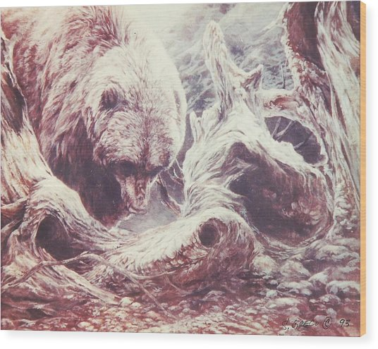 Grizzly Bear Wood Print by Steve Greco